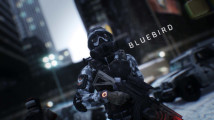 tc-the-division-hvt-bluebird